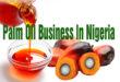 Palm Oil Business In Nigeria
