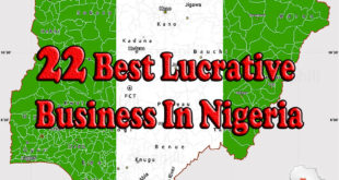 Lucrative Business In Nigeria