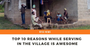 Top 10 Reasons While Serving In The Village Is Awesome